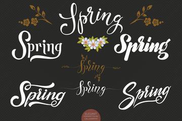 Set of hand drawn lettering Spring. Elegant modern handwritten calligraphy. Vector Ink illustration. Typography poster on dark background. For cards, invitations, prints etc.
