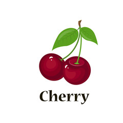 Pair of cherries, isolated vector