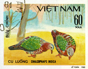 Ukraine - circa 2018: A postage stamp printed in Vietnam show Common Emerald Dove or Chalcophaps indica. Series: Doves. Circa 1980.