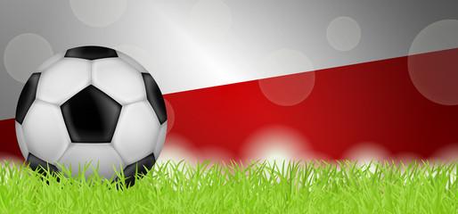 Fußballwiese - Flagge von Polen