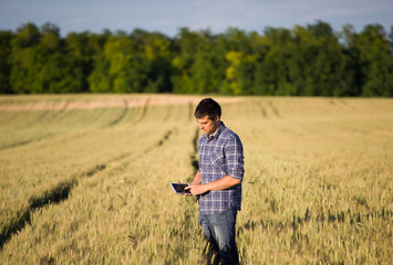 Farmer with tablet in wheat field