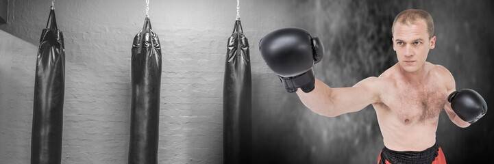 Boxer man with punching bags in gym