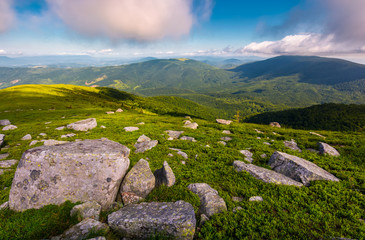 boulders on grassy hill in summer. lovely nature scenery under the cloudy sky in Carpathian mountains, Ukraine