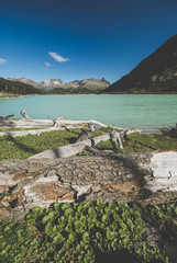 Emerald lagoon , a popular location near Ushuaia,the southernmost city in the world, Tierra del fuego, Argentina. In the foreground the damages produced by beaver