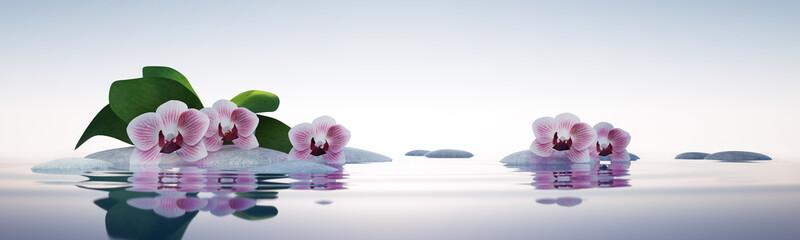 Orchideen mit Steinen im See