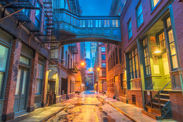New York City Alleyways Wall mural