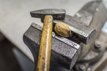 Hammer with walnut in a vice. Choosing the right tool.
