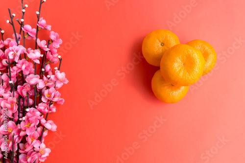 chinese new year background concept mandarin orange and plum cherry blossom