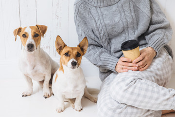 Cropped shot of unrecognizable female in knitted warm sweater, holds takeaway coffee, sits near her favourite two dogs, who look directly into camera. Wonderful pets pose, have good relations