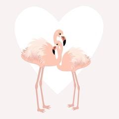 Pair of cute flamingos