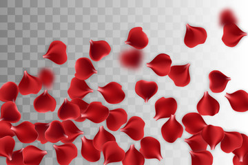 Random falling petals. Isolated greeting frame. Red rose petal transparent background. Vector wedding illustration. Valentines Day greeting card. Valentine's floral poster. Valentine symbol.