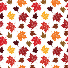 Seamless Pattern of Maple Leaf Nature Colorful Ecology Background