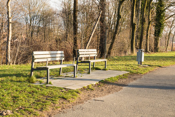 bench in a park in winter on sunny day