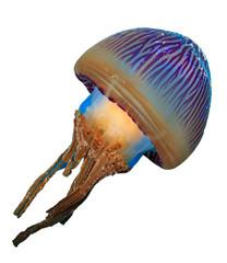 Jellyfish isolated on white background