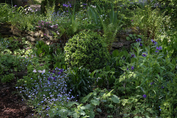 Hochbeet im Schattengarten
