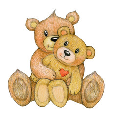 Cute,  sitting, cuddling  bears   isolated, hand drawing.