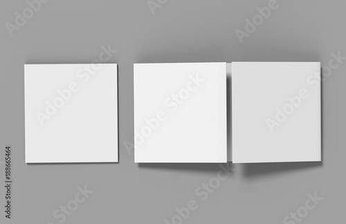 Eight page Double gate fold brochure blank white template
