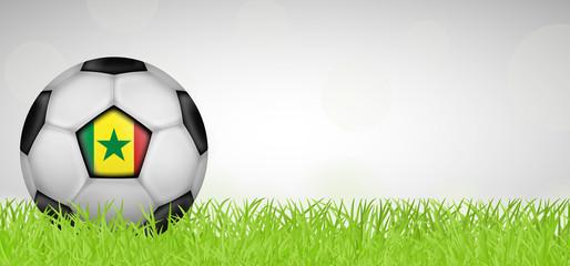 Fußballwiese - Fußball Senegal