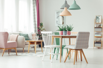 Pastel apartment with aloe plants