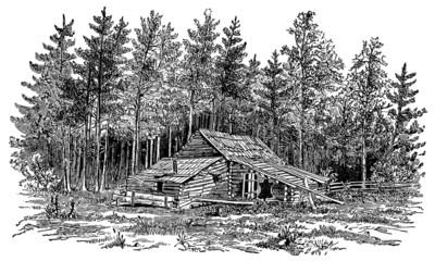 Cabin in the woods - vintage engraving illustration