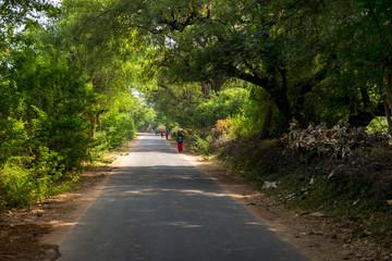 on the road near Bera, Rajasthan