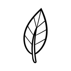Cartoon Leaf Black Line White Background