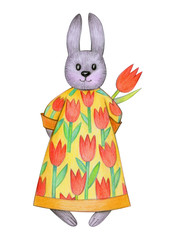 Cute  Easter bunny holding tulips  isolated.