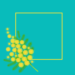Branch of mimosa, frame. International Womens Day