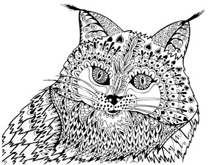 Portrait of a lynx. Freehand sketch drawing for adult antistress coloring book