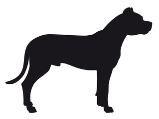 Dogo Argentino - Vector black dog silhouette isolated