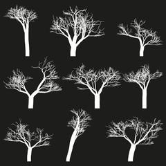 Set of white outlines trees black background.