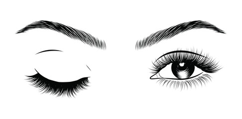 Hand-drawn woman's sexy luxurious winking eye with perfectly shaped eyebrows and full lashes. Idea for business visit card, typography vector. Perfect salon look.