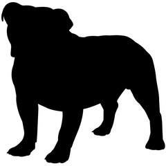 Bulldog Silhouette Vector Graphics