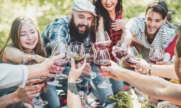 Happy friends cheering with red wine at picnic barbecue outdoor