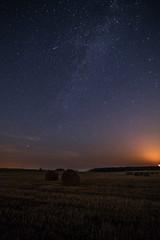 Starry sky above field