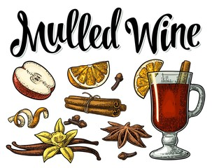 Mulled wine with glass and ingredients. Vector black vintage engraving