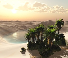 Oasis. The pond in the sandy desert with palm trees above the water
