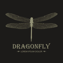 Dragonfly in vintage style on a black background. Stylish design of tattoos. Vector illustration. Creativity, freedom, speed concept. Brand, corporate identity template. Editable. Sample text