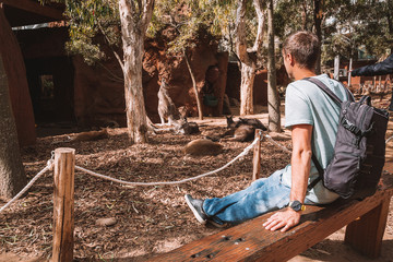 Young man sitting in the park admiring Kangaroo resting on the ground.