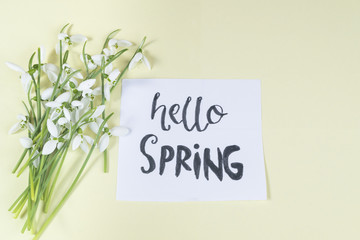Hello spring calligraphy note decorated with snowdrops on light yellow background