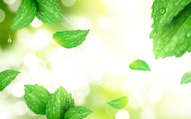 Peppermint bokeh background