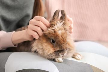 Woman with pet rabbit, closeup