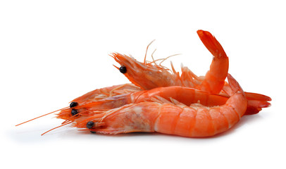 Fresh shrimps isolated on a white background.
