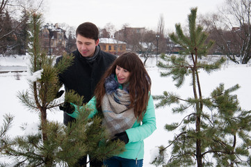 Two lovers walk in the winter park near the pines