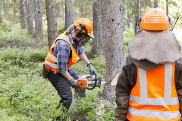 Lumberjack felling tree in forest