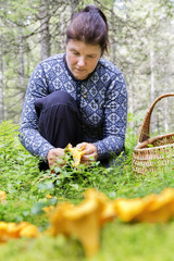 Woman picking mushrooms in forest