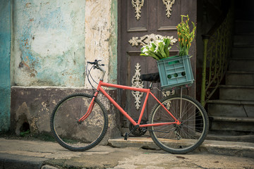 Red bikes with a basket of flowers