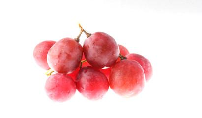 виноград чёрный столовый крупный