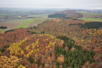 Wald Landschaft mit Windanlage