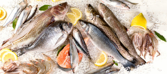 Photo sur Plexiglas Poisson Fresh fish